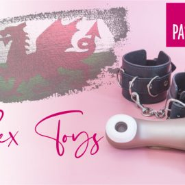 Sex Toy Shopping in Cardiff